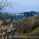Osho-circle-school lands 29