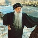 Osho Forest